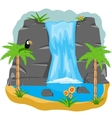 Waterfall in tropic vector image