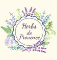 background with provencal spices and herbs vector image vector image