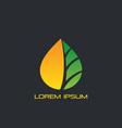 gold leaf eco logo vector image vector image