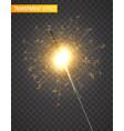 light sparkler decoration holiday sparkler vector image vector image