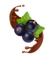 black currant in chocolate splash vector image vector image