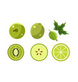 green fruits and berries set lime apple vector image