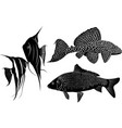 set fish silhouettes vector image