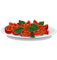 tomato salad with basil vector image vector image