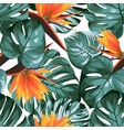 tropical greenery philodendron monstera jungle vector image vector image