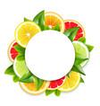 citrus fruits slices arrangement round frame vector image vector image