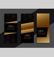 premium golden vertical banners card set vector image
