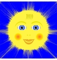 Smiling Yellow Sun Icon vector image vector image