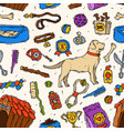 hand drawn dog friend accessory canine vector image