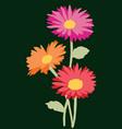 card bouquet garden gerberas vector image vector image