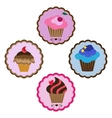 delicious cupcakes vector image vector image
