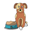 dog sitting with food and bone vector image