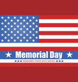 flag america memorial day isolated vector image vector image