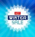Hot Winter Sale Retro Blue Background vector image