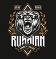 russian street league print vector image