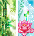Vertical banners with bamboo and lotus vector image vector image