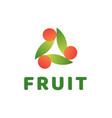 creative abstract fruit logo vector image