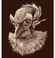 Ancient elf portrait vector image