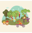 autumn garden fall harvesting people collect crop vector image