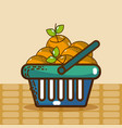 basket with oranges super market products vector image vector image