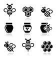 Bee and honey icons set vector image vector image