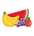 delicious fruits cartoons vector image vector image