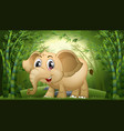elephant in bamboo forest vector image vector image