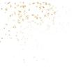 Festive glittering gold confetti falling EPS 10 vector image vector image