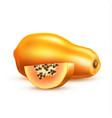 realistic 3d papaya pawpaw with slice vector image vector image