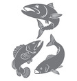 silhouettes fish vector image vector image