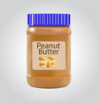 peanut butter detailed icon isolated on white vector image