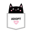 adopt me black cat in the pocket cute cartoon vector image vector image