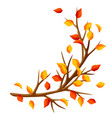 autumn branch of tree and yellow leaves seasonal vector image vector image