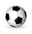 football ball soccer ball on wfite background vector image