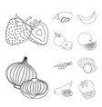 isolated object of vegetable and fruit sign vector image vector image