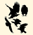 silhouette of eagle vector image vector image