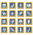 tropical sea shell icons set blue square vector image