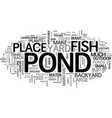 backyard fish ponds a how to text word cloud vector image vector image