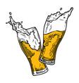beer splc vector image vector image