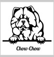chow - peeking dogs - breed face head vector image vector image