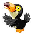 funny toucan cartoon singing vector image
