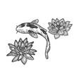koi carp sketch vector image