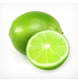 Lime citrus fruit icon vector image vector image