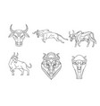 bull and cow line sign and symbol vector image vector image