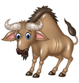 Cartoon Wildebeest mascot isolated vector image vector image
