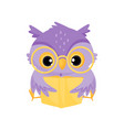 cute purple wise owl bird reading a book school vector image
