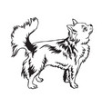 decorative standing portrait longhaired vector image vector image