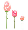 drawing three colorful roses with thorns or vector image vector image