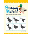Game template for shadow matching duck vector image vector image