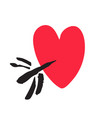 hand drawn red heart pierced by arrow valentins vector image